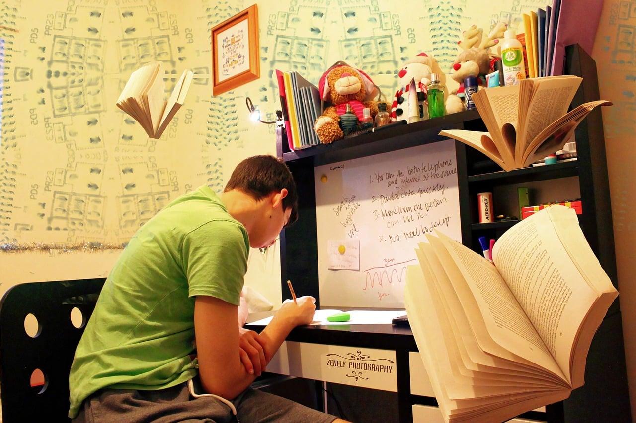 studying-951818_1280
