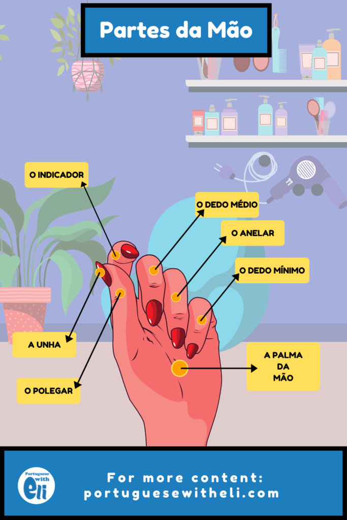 hand parts in portuguese