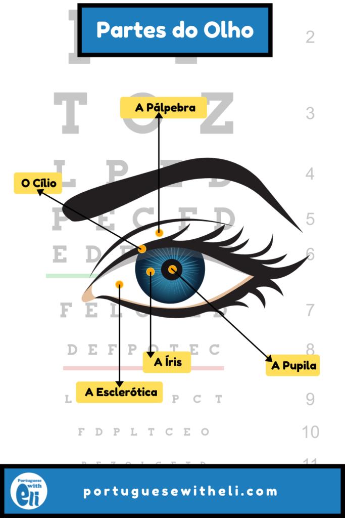 eyes in portuguese